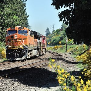 Southbound at Steilacoom