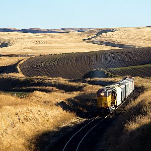 PCC grain train in the Palouse
