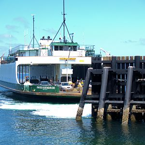 The Rhodendron Docking at Pt Defiance