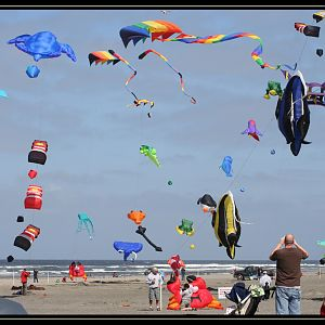 Washington State International Kite Festival 2010