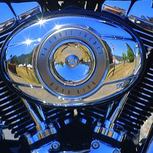 Harley Reflections