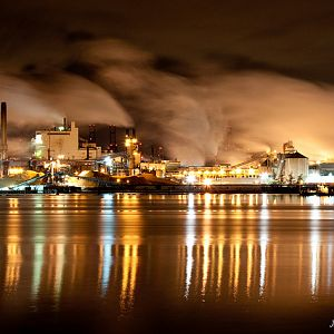 Pulp mill in Tacoma WA