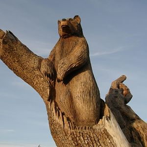 Wooden Carving Bear