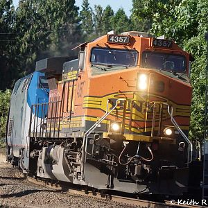 BNSF Leading the Coast Starlight